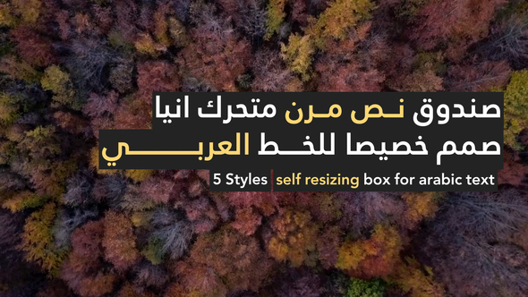 Videohive Arabic Stories 21994116