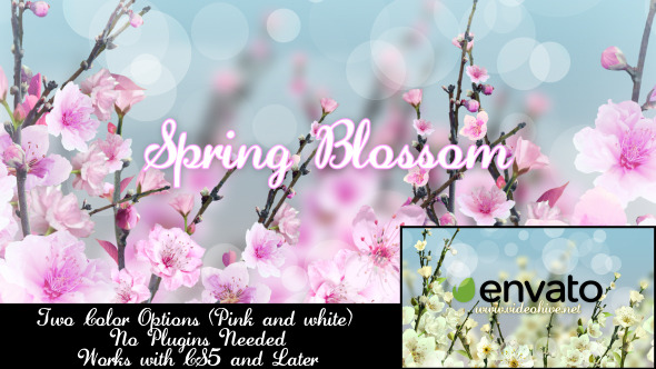 Videohive Spring Blossom 7133339